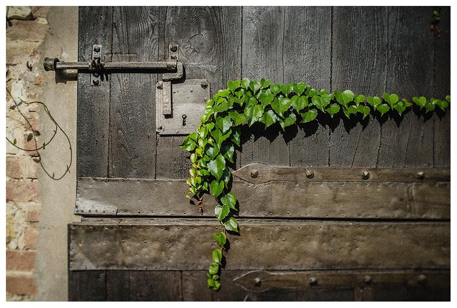 Habgood-Images-Tuscany,-Italy-54